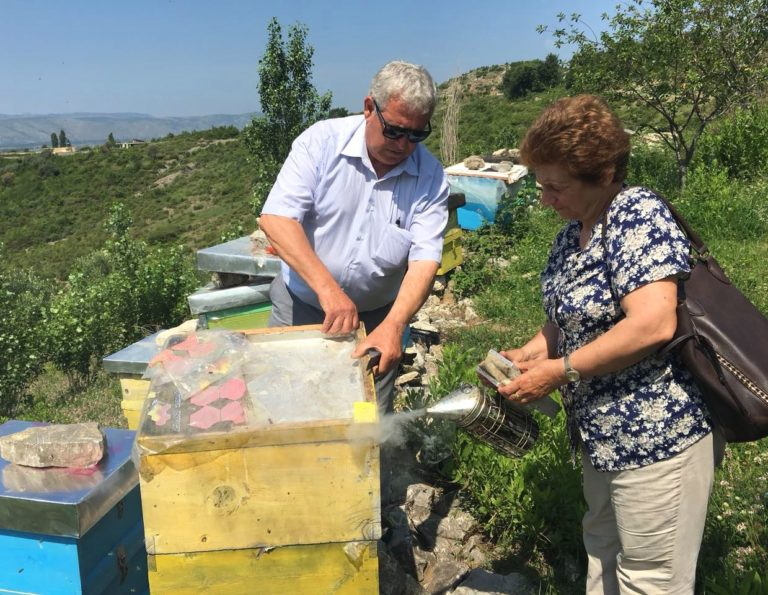 Lejla Shehu visiting beehives of Lezhe Beekeeper Association